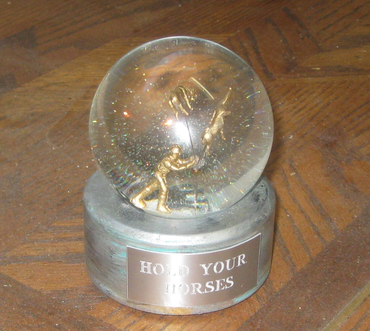 Hold Your Horses custom snow globe, Camryn Forrest Designs, Denver, CO USA 2016